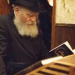Rebbe Tehillim
